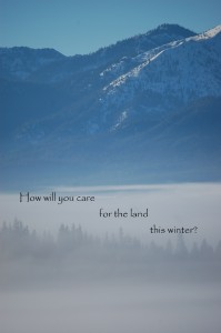 winter care land2